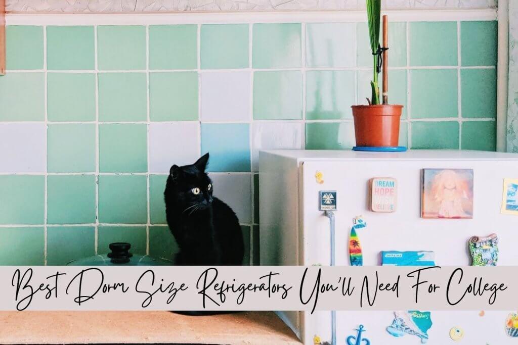 dorm size refrigerator